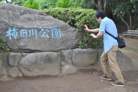 柿田川公園石碑