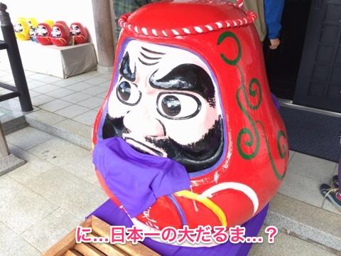 これが日本一の大だるま…?